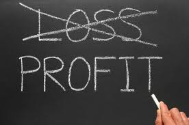 Loosprofits